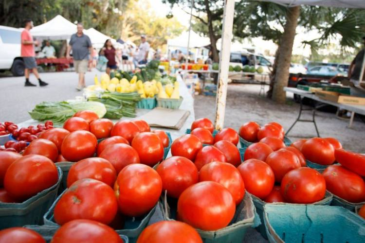 Photo Courtesy of https://www.theamp.com/farmers-market