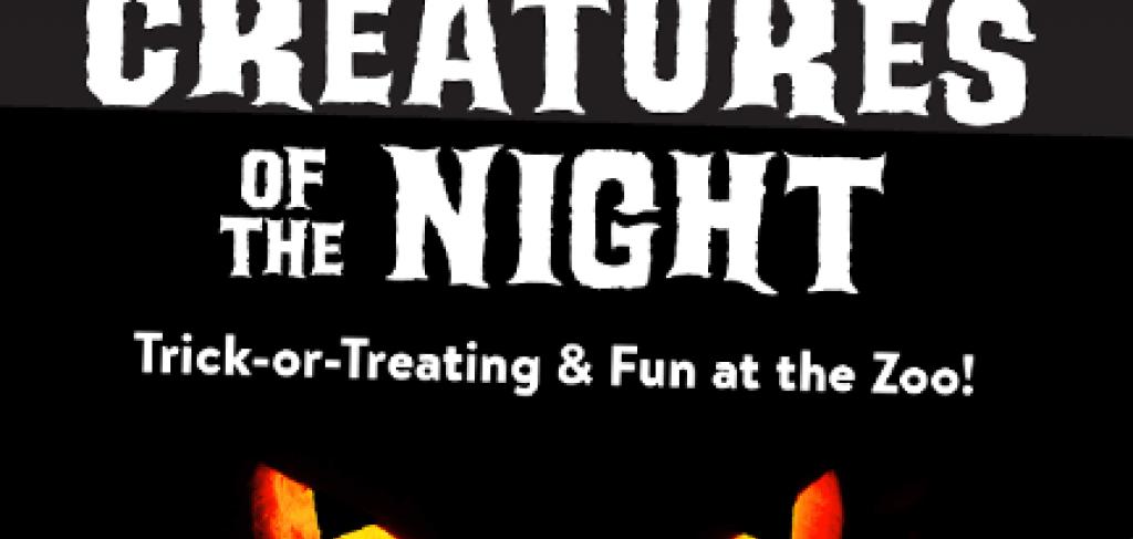 Photo Courtesy of https://www.alligatorfarm.com/creatures-of-the-night/